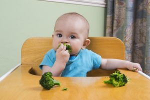 baby led weaning info